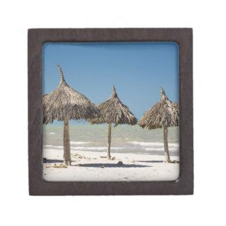 Mexico, Yucatan Peninsula, Progreso. Thatch Gift Box