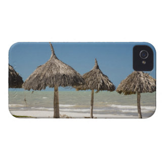 Mexico, Yucatan Peninsula, Progreso. Thatch iPhone 4 Case-Mate Cases