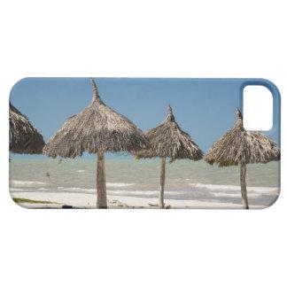 Mexico, Yucatan Peninsula, Progreso. Thatch iPhone SE/5/5s Case