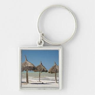 Mexico, Yucatan Peninsula, Progreso. Thatch Keychain