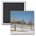 Mexico, Yucatan Peninsula, Progreso. Thatch Fridge Magnet