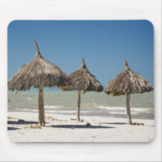 Mexico, Yucatan Peninsula, Progreso. Thatch Mouse Pad