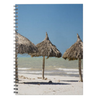 Mexico, Yucatan Peninsula, Progreso. Thatch Notebook