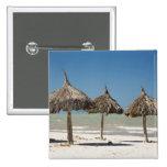 Mexico, Yucatan Peninsula, Progreso. Thatch Pins