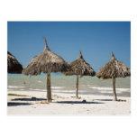 Mexico, Yucatan Peninsula, Progreso. Thatch Postcard