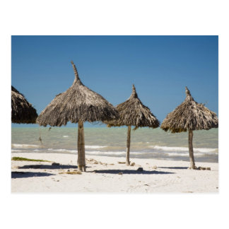 Mexico, Yucatan Peninsula, Progreso. Thatch Postcard