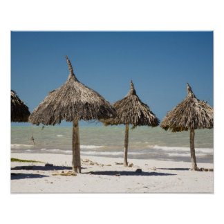 Mexico, Yucatan Peninsula, Progreso. Thatch Poster