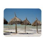 Mexico, Yucatan Peninsula, Progreso. Thatch Rectangle Magnet