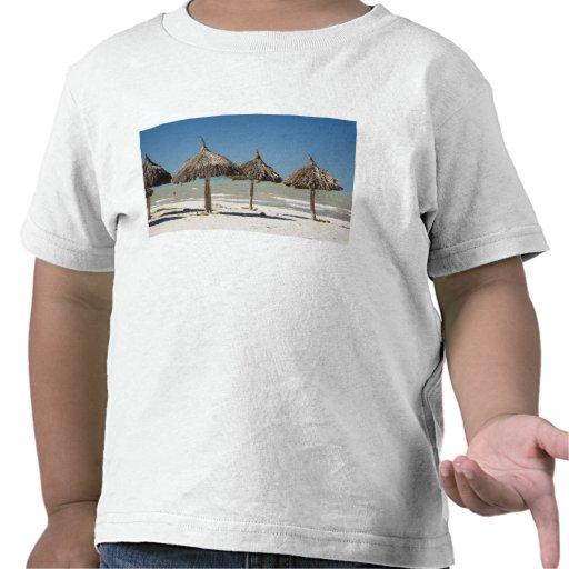 Mexico, Yucatan Peninsula, Progreso. Thatch T-shirt