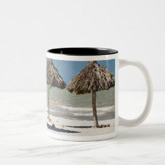 Mexico, Yucatan Peninsula, Progreso. Thatch Two-Tone Coffee Mug