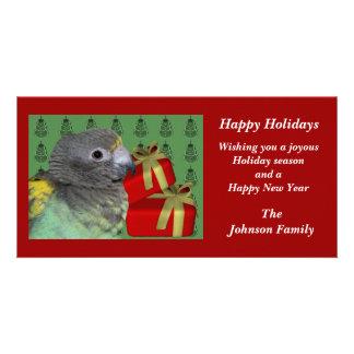 Meyers Parrot Animal Christmas Holiday Card