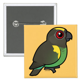 Meyer's Parrot 2 Inch Square Button