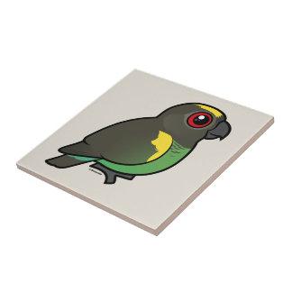 Meyer's Parrot Ceramic Tile