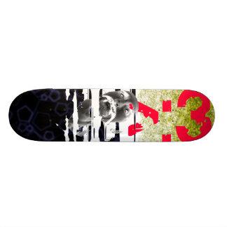 Mezcla cáustica de la toma tabla de skate