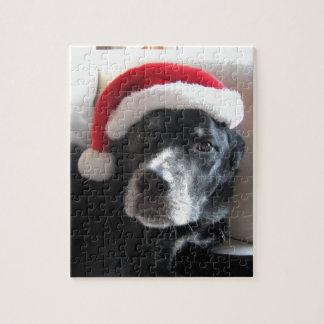 Mezcla de Santa Perro-Labrador Rottweiler Puzzle Con Fotos