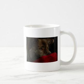 mezcla del perro chino con la taza del corazón