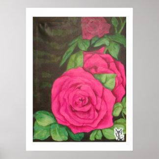 Mezzanotte Rosa Poster