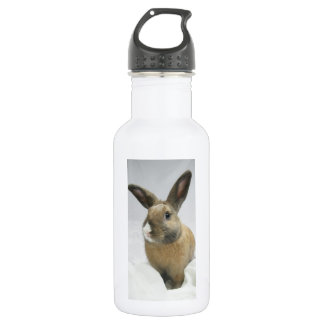 MHRR Honeybadger Bunny rabbit beverage bottle