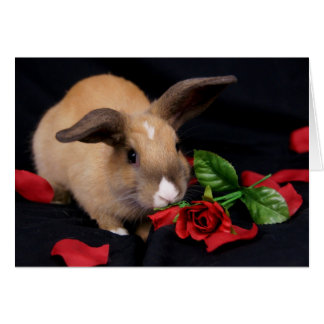 MHRR Honeybadger Bunny rabbit rose greeting card