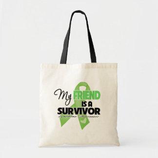 Mi amigo es un superviviente - linfoma bolsas de mano