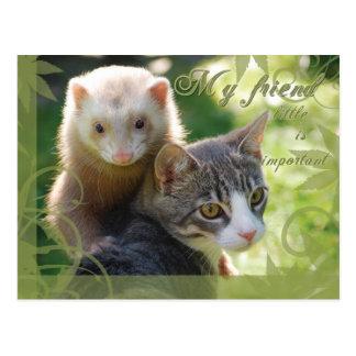 Mi amigo tarjetas postales
