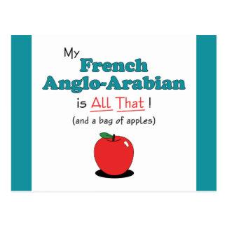 ¡Mi Anglo-Árabe francés es todo el eso! Caballo Postales