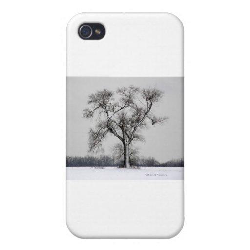 Mi árbol preferido iPhone 4/4S funda