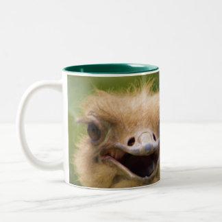 Mi avestruz de la taza