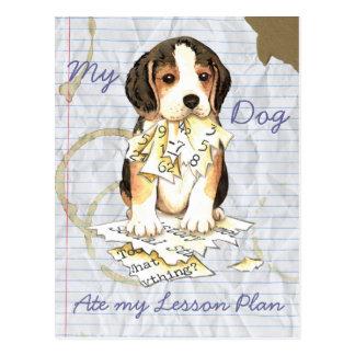 Mi beagle comió mi plan de lección tarjetas postales