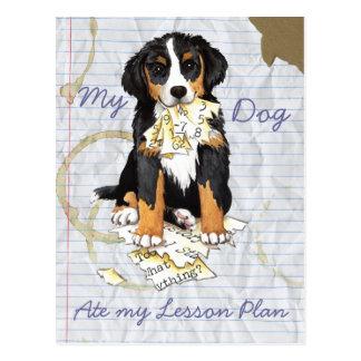 Mi Berner comió mi plan de lección Postales