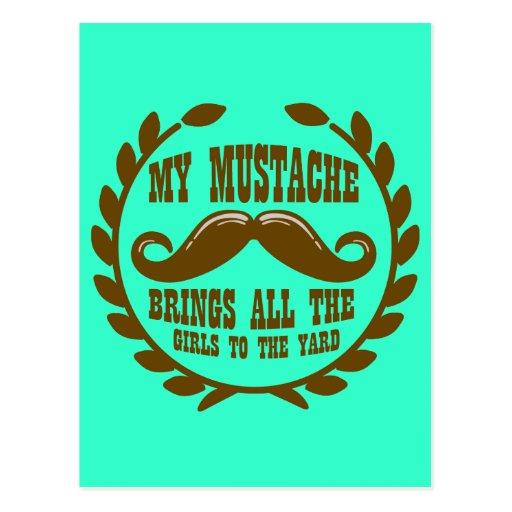 Mi bigote trae a todos los chicas a la yarda postales