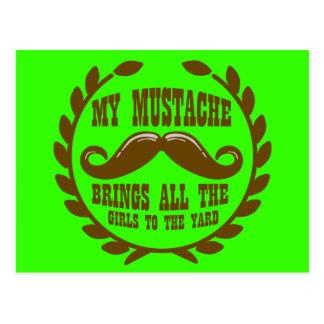 Mi bigote trae a todos los chicas a la yarda tarjetas postales