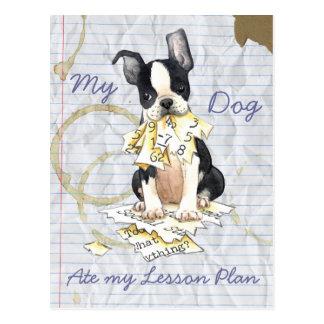 Mi Boston Terrier comió mi plan de lección Tarjetas Postales