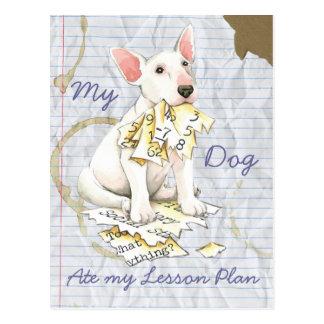 Mi bull terrier comió mi plan de lección tarjetas postales