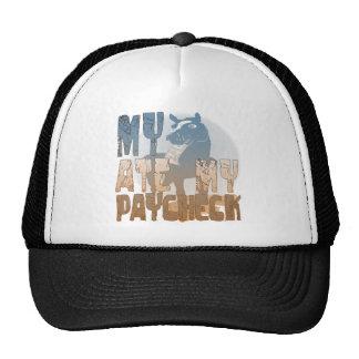 Mi caballo comió mi cheque gorras