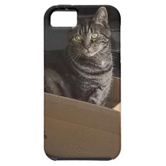 Mi caja Dave Funda Para iPhone SE/5/5s
