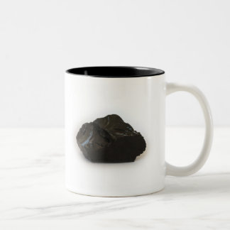 Mi carbón para hoy taza de café de dos colores