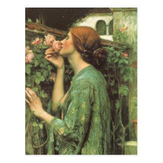 Mi color de rosa dulce, o alma del color de rosa postales