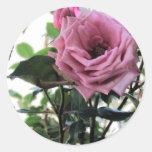 Mi color de rosa pegatina redonda