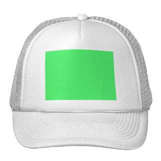 Mi corazón pertenece a un desarrollador de la gorras de camionero