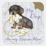 Mi Dachshund comió mi plan de lección Calcomanía Cuadrada Personalizada