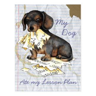 Mi Dachshund comió mi plan de lección Postales