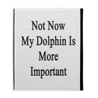 Mi delfín es más importante no ahora