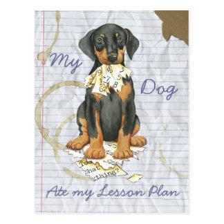 Mi Doberman comió mi plan de lección Tarjetas Postales