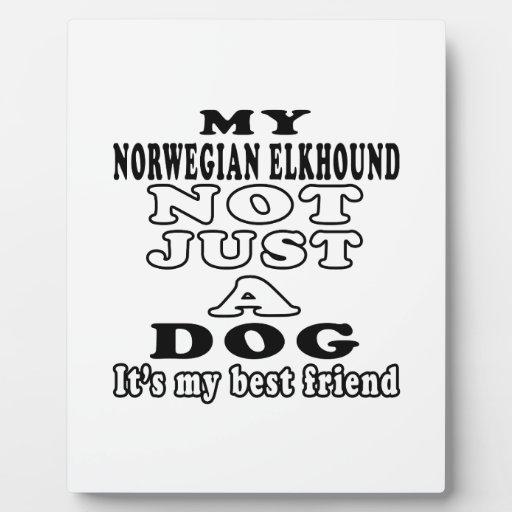 Mi Elkhound noruego no apenas un perro Placa Para Mostrar