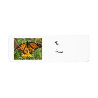 Mi etiqueta del Mariposa-navidad del monarca Etiquetas De Remite