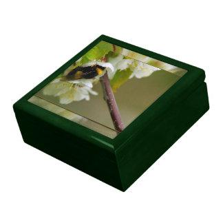 Mi flor cajas de recuerdo