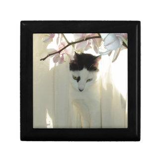 Mi gato blanco y negro bonito del gatito caja de recuerdo