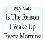 Mi gato es la razón que despierto cada mañana comunicado personal