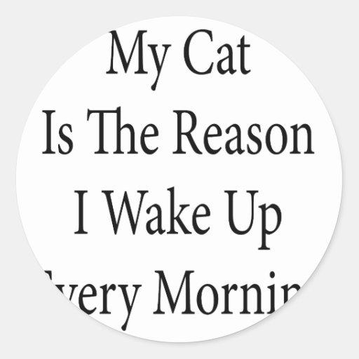 Mi gato es la razón que despierto cada mañana pegatina redonda